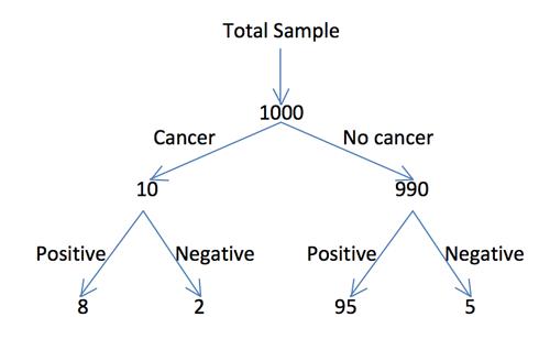 Pictorial Format - diagram.